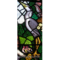 All Saints, Nazeing Church - Detail from Peter Cormack glass, showing heron.